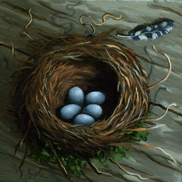 The Bird Nest - Bluejay