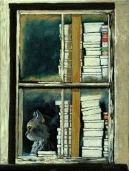 Cat Guard- Books & Boxes - window series