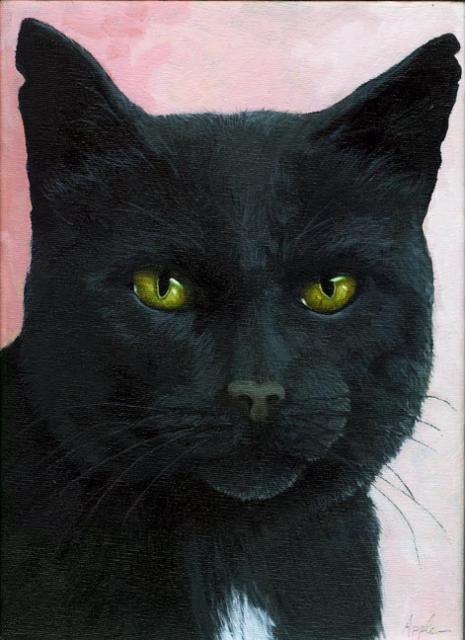 Brambles - black cat portrait