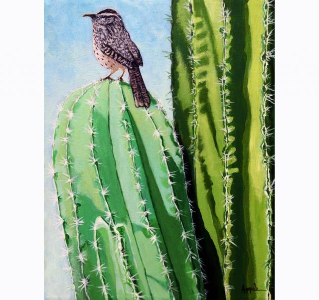 Cactus Wren Palm Springs,California