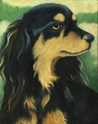Dog Portrait - Carson
