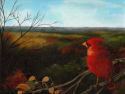 Fall Cardinal