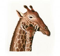 Giraffe - original wildlife animal illustration painting art