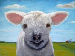 Happy Day farm animal sheep lamb landscape