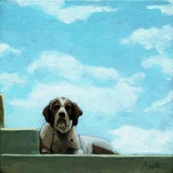 dog portrait - In the Clouds