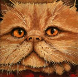 Persian Cat - Crookshanks