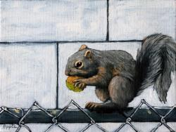 Squirrel Away - realism animal art oil painting