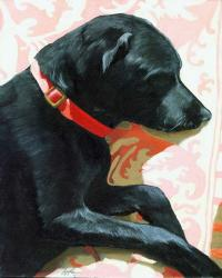 Sun Dog - black lab
