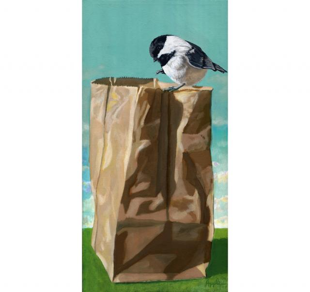 What's In The Bag? - realistic bird portrait nature