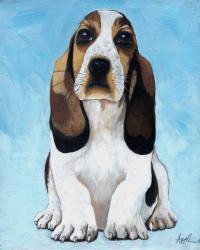 Baby Basset - animal portrait